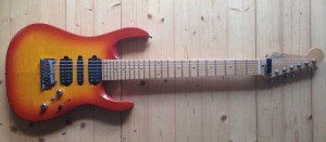 Guitars_Zagler_7string