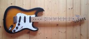 Guitars_Zagler_6string