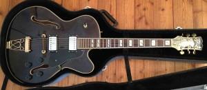 Guitars_Samick