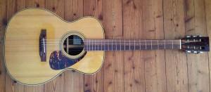Guitars_Stanford
